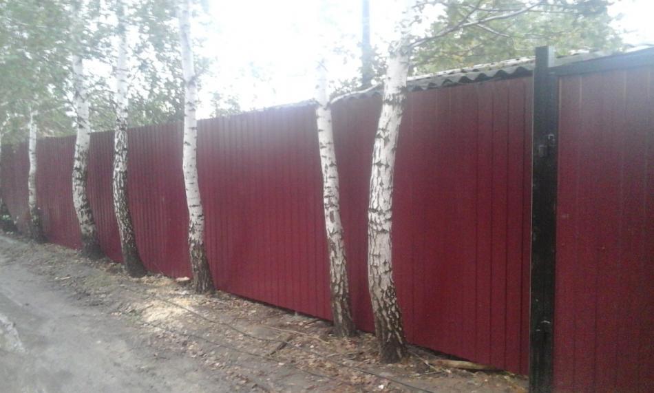 Забор из профлиста СТ Высотой 2м.